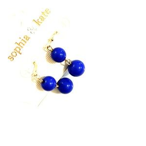 Blue Dangle Earrings